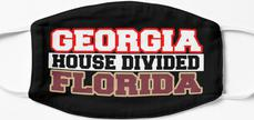 Georgia House Divided Florida Mask