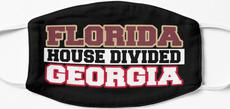 Florida House Divided Georgia Mask